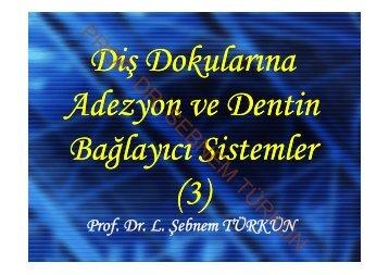 PROF. DR. SEBNEM TÜRKÜN