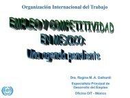 Empleo y Competitividad en México Una Agenda Pendiente.