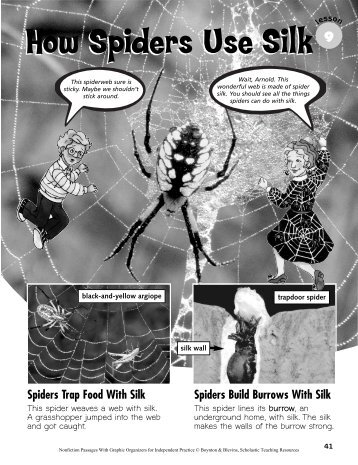 How Spiders Use Silk