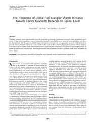 The Response of Dorsal Root Ganglion Axons to Nerve Growth ...