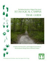 ECOLOGICAL CAMPuS TRAIL GuIDE - Richard Stockton College of ...