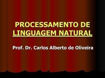 PROCESSAMENTO DE LINGUAGEM NATURAL