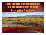 RioGrande Ecosystem Services Tools - Workshops