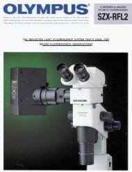 the reflected light fluorescence system that's ideal for macro - iOlympus