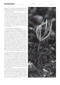 Newsletter Ecole d'Humanité - Seite 3