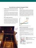 Revestimiento resistente al desgaste  Trellex P roductos de ... - Metso - Page 2