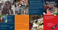 Noctalis - Welt der Fledermäuse, pädagogische Angebote