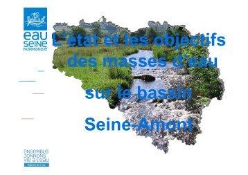 Etat et objectif de masses d'eau sur le bassin Seine amont