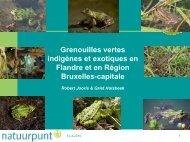 Les grenouilles vertes en Flandre et en - Natagora