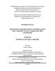 3. Zonificación.pdf - Plan Estratégico de Malargüe