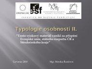 Typologie osobnosti II