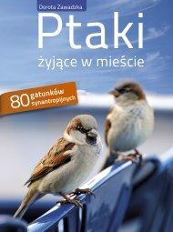 żyjące w mieście - Publio.pl