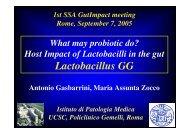 Lactobacillus GG