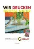 pdf, ~2,5 MB - Stadtfeuerwehr Tulln - Page 2
