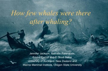 How few whales were there after whaling?