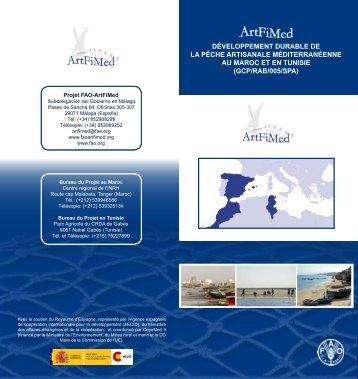 développement durable de la pêche artisanale ... - Faoartfimed.org