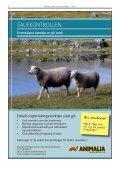 2011 - Norsk Sau og Geit - Page 4