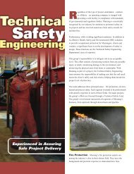 Experienced in Assuring Safe Project Delivery - Mustang ...