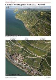 01_Lavaux_PreviewQuality.pdf - Luftbilder der Schweiz