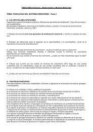 16 - Sistema Endocrino (parte 1) 2008