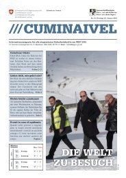 2015 CUMINAIVEL #10
