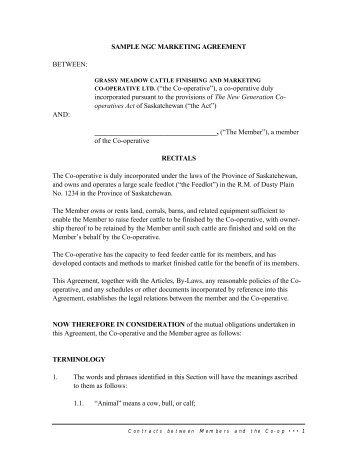 Sample Foreign Representation Agreement