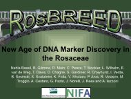New Age of DNA Marker Discovery in the Rosaceae - RosBREED