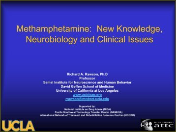 Methamphetamine: New Knowledge, Neurobiology and Clinical ...