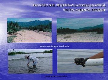 Factores del sistema ambiental regional - Gobierno del Estado de ...