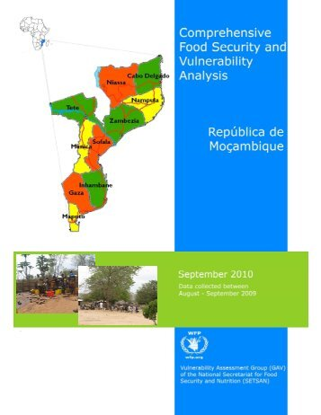 Comprehensive Food Security and Vulnerability Analysis - Southern ...