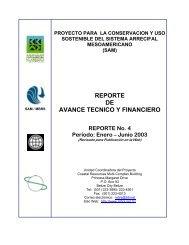 Reporte de Avance No. 4 - Mesoamerican Barrier Reef Systems ...