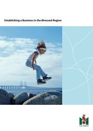 Establishing a Business in the Øresund Region - Malmobusiness.com