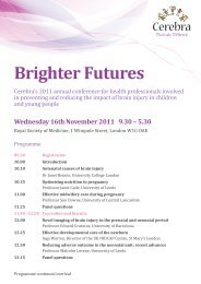 Brighter Futures - Cerebra
