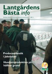 Husdjursproduktion på hållbar grund Producentbesök i ... - Snellman
