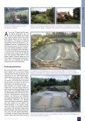Der Traum vom Schwimmteich Ein detaillierter Erfahrungsbericht ... - Page 2
