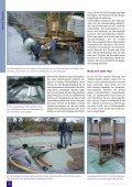 Der Traum vom Schwimmteich Ein detaillierter Erfahrungsbericht ... - Page 3