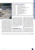 Der Traum vom Schwimmteich Ein detaillierter Erfahrungsbericht ... - Page 6