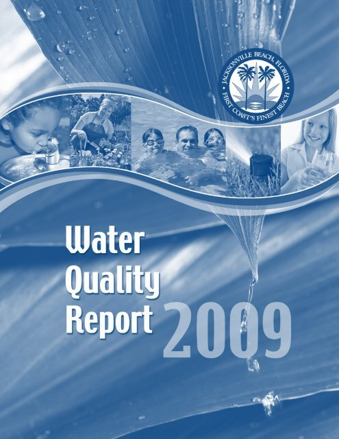 Jacksonville Beach Fl Water Report
