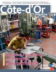 novembre 2011 en PDF - Conseil Général de la Côte-d'Or