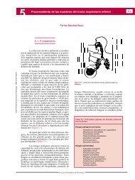 5 - Guía Práctica de Identificación y Diagnóstico en Micología - Revista