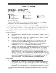 Minutes of the March 4, 2013 Executive Committee meeting