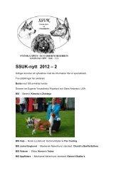 Nyhetsbrev 2012 nr 2 - SSUKs