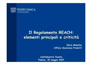 Il Regolamento REACH: elementi principali e criticità