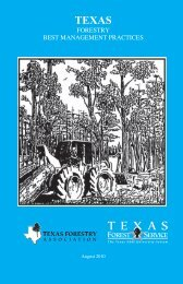 Forestry Best Management Practices - Texas Forest Service