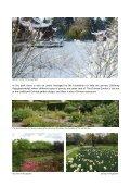 Hortus botanicus Groningen - Page 3