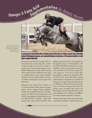 Omega-3 Fatty Acid Supplementation for Athletic Horses