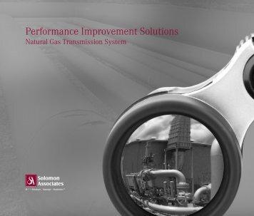 Performance Improvement Solutions - Solomon Associates