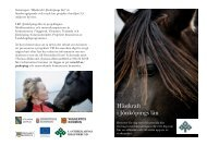 Hästkraft i Jönköpings län - broschyr 2009.pdf - Vaggeryds kommun