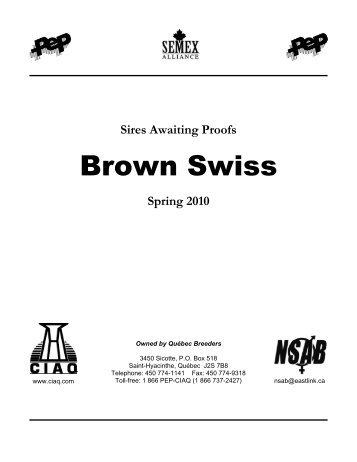Brown Swiss - CIAQ