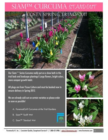 Curcuma - Favorites at Costa Trials 2011 (PDF) - ForemostCo